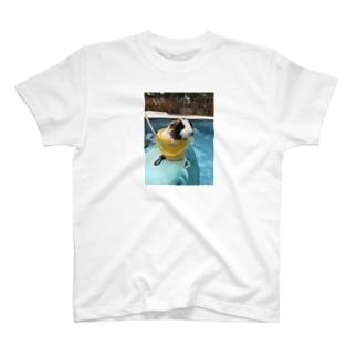 まいきのTシャツ T-shirts