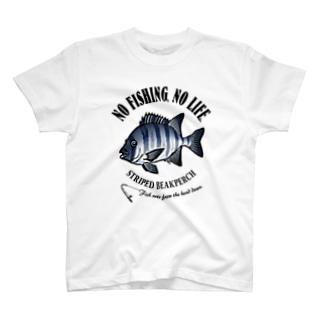 ISHIDAI_EB_1CW T-shirts