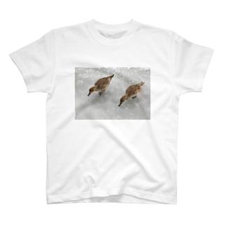 2羽のオナガガモ T-shirts