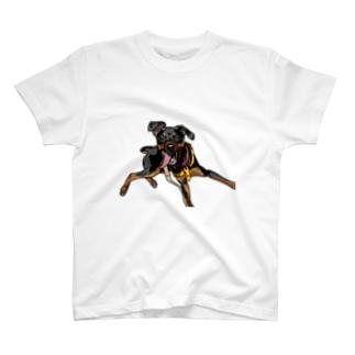 ミニピン ジロすえっと T-shirts