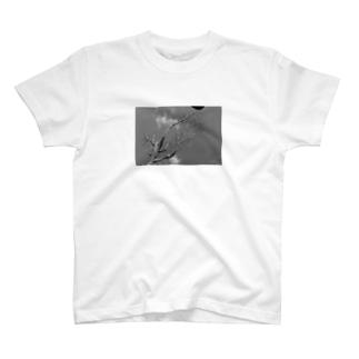 続・フィルム破れ記念Tシャツ T-shirts