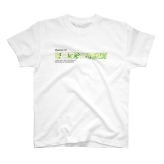 Private/Public T-shirts