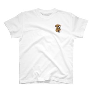 モコモコボストンテリアのごま坊君 T-shirts