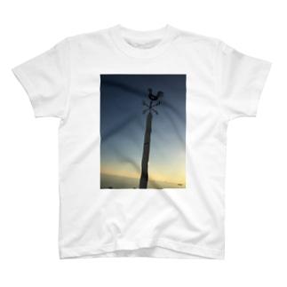 kazamidori T-shirts