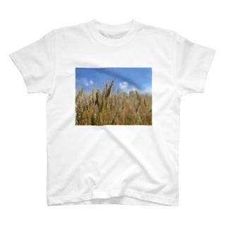 小麦畑 T-shirts