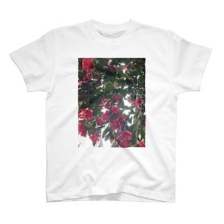 フラワープリント Tシャツ T-shirts