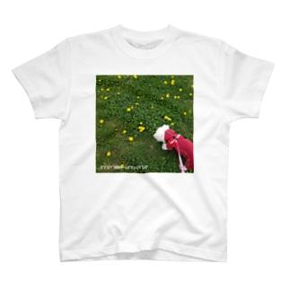 inner universe osampo T-shirts