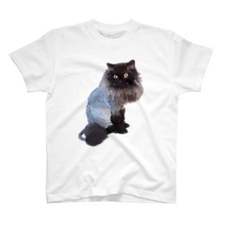 セルカークレックス サマーカット 一匹バージョン T-shirts