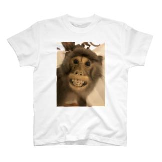 台湾で見ためちゃくちゃ怖い猿の剥製 T-shirts