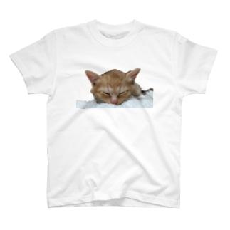 しあわせにゃんこ おひるね2 T-shirts