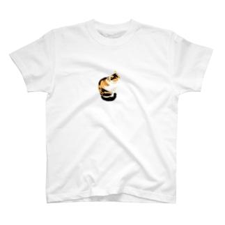 三毛猫にゃんこ T-shirts