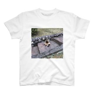 二つ折り猫 T-shirts