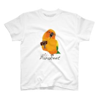 コガネメキシコインコ T-shirts