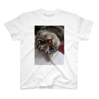 目開くぽてと T-shirts