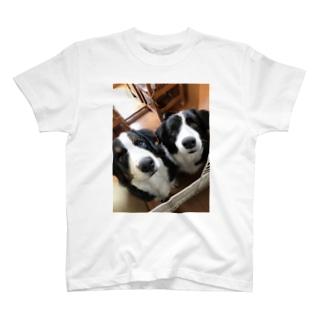 サントスとタンク T-shirts