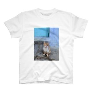 モロッコ・シャウエン  T-shirts