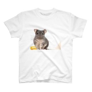 うにといくら推しTシャツ T-shirts