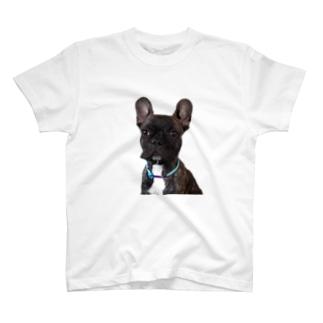 ガンジー T-shirts