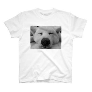 眠る犬2(タイ) T-shirts
