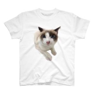 にゃじろう(困) T-Shirt