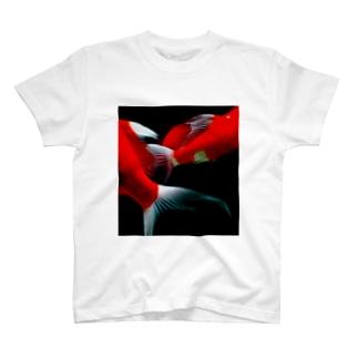 錦鯉の鰭 T-shirts