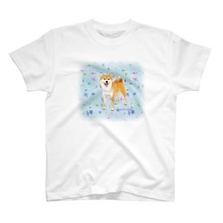 柴犬(青い小花) T-shirts