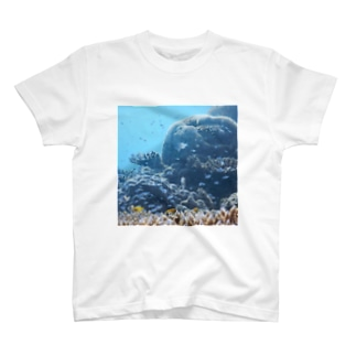 uminonaka T-shirts