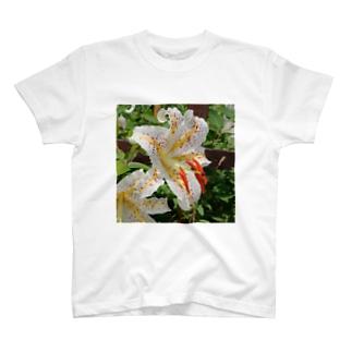 yamayuri T-shirts