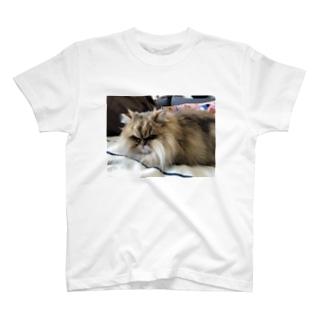 おもちねむねむ T-shirts
