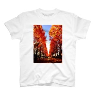秋が一番近づいた日 T-shirts