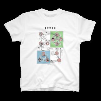 片陸遼助の星座相関図Tシャツ Tシャツ