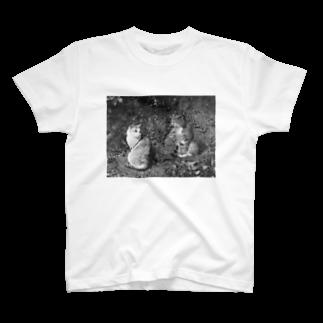 uco のcat T-shirts