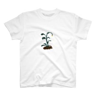 ハナチルザッソウ T-shirts
