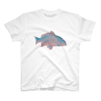 コイアイテム T-shirts