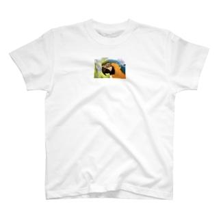 おうむのてぃーしゃつ T-shirts