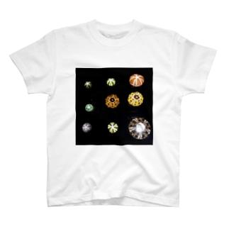 ウニランプ色々 T-Shirt