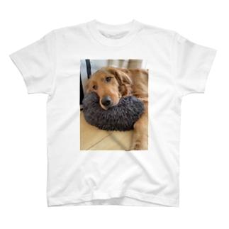 【NEW】クッション泥棒よもぎ T-shirts