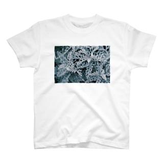 静かな森 T-shirts