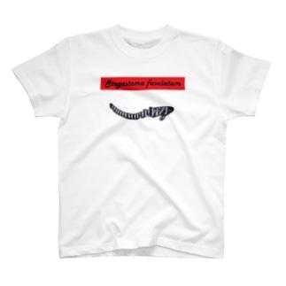 トラフザメ 子 T-shirts