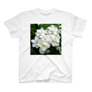 富士の滝 T-shirts