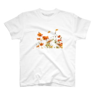 初夏のコスモス T-shirts