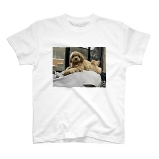 犬のくつろぎ T-shirts
