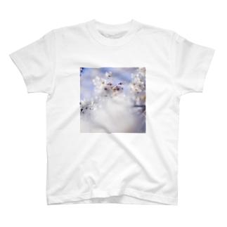 桜_1 T-shirts