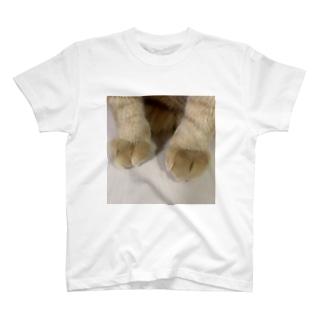 とら吉のくりーむパン🍞(猫の足) T-shirts