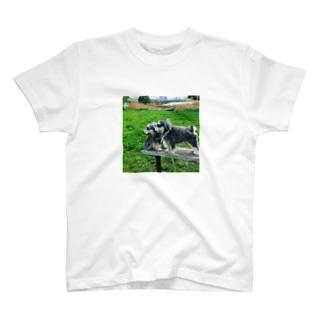 トランプとオリバーのトランプとオリバー T-shirts