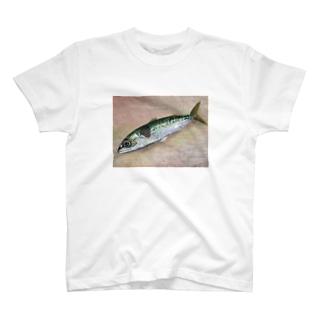 SABA 背景あり T-shirts