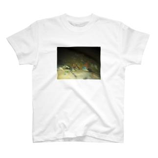 砂浜とコンバース T-shirts