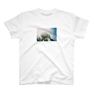 向日葵 T-shirts