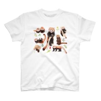 レッサーパンダ2021B T-shirts