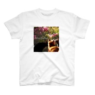 ももと天空☆あのね、もも T-shirts